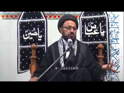 [2] Topic: Ghurbat-e-AhleBait (as) غربت اہلبیتؑ | H.I Sadiq Raza Taqvi | Safar 1439/2017 - Urdu