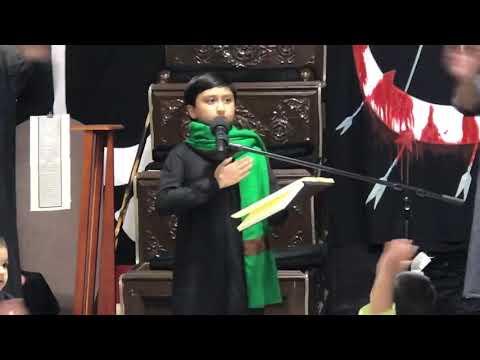 [Noha] Hoo paau zaqmoon se bhare aisa musafir koun hai   Alamdar Moosavi   Toronto Canada - Urdu