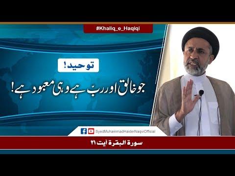 Jo Khaliq Aur Rab Hay Wohi Mabood Hay! | Ayaat-un-Bayyinaat | Hafiz Syed Muhammad Haider Naqvi | Urdu