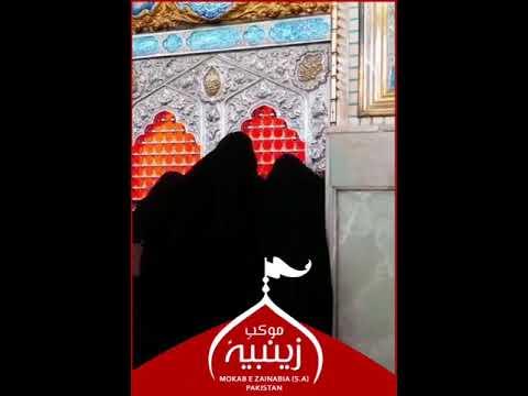 WhatsApp Status [1] | Arbaeen Yaani Tahreeke Zainabi Ka Waris Banna - Urdu